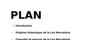Lex mercatoria droit des contrats