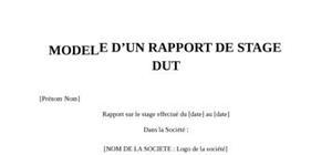 Rapport de Stage DUT