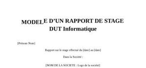 Rapport de Stage DUT Informatique