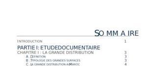La grande distribution au maroc: etude qualitative de la satisfaction client- cas marjane