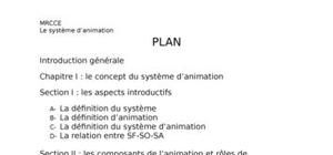 Systeme de gestion : systeme d'animaion