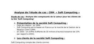 Analyse de l'étude de cas : crm  « soft computing »