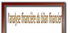 L'analyse financière du bilan financier
