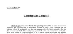 Commentaire composé therese raquin chap 6