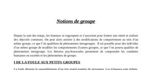 Notions de groupe psychologie sociale
