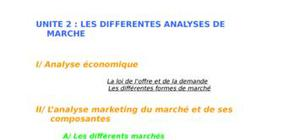 Les différentes analyses de marché ( analyse économiques, marketing..)