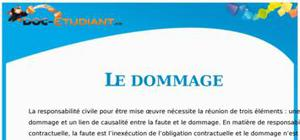 Le Dommage en Droit : Cours Droit Terminale STG