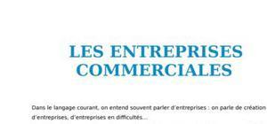 Les entreprises commerciales