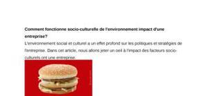 L'impact de l'environnement socio culturel
