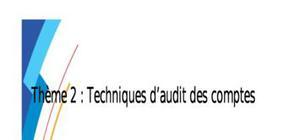 Techniques d'audit des comptes