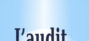 L'audit - Cours
