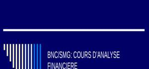Bnc/smg: cours d'analyse financiere