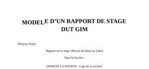 Rapport de stage DUT GIM