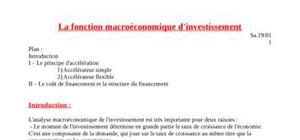 La fonction macroéconomique d'investissement