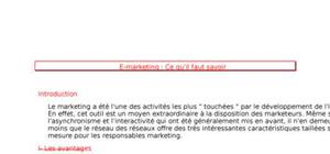 Le E-marketing international
