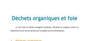 Doc - Déchets organiques et foie PACES