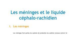 Les méninges et le liquide céphalo-rachidien - Médecine PACES