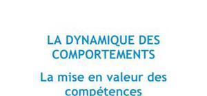 La dynamique des comportements : la mise en valeur des compétences - Ressources Humaines Bac+3