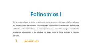 Polinomios I