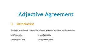 The adjective agreement