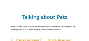 Talking about pets in Spanish