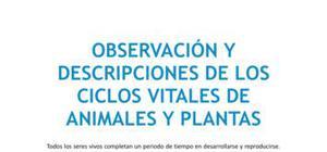 Observación del ciclo vital de animales y plantas