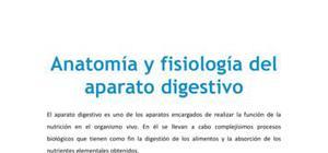 Anatomía y fisiología del aparato digestivo - Biología - 3 de ESO