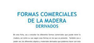 Formas comerciales de la madera - Tecnología - 1 de ESO