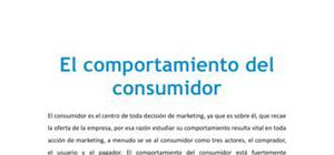 El comportamiento del consumidor - Marketing - Grado
