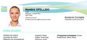 Modelo De Curriculum Vitae Europeo Espanol Modelo Cv