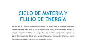 Ciclo de materia y flujo de energía - Biología - 4 de ESO