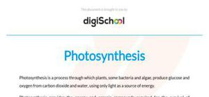 Photosynthesis - Biology - A level