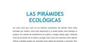 Las pirámides ecológicas - Biología - 4 de ESO