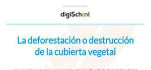 La deforestación o destrucción de la cubierta vegetal - Geografía - 2 Bachillerato