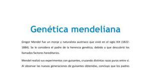 Genética mendeliana - Biología - 4 ESO