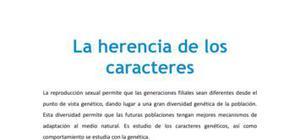 La herencia de los caracteres genéticos - Biología - 4 ESO