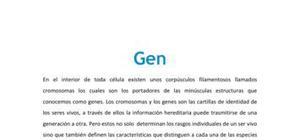 Gen - Biología - 4 ESO