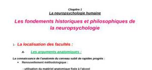 Introduction  à la Neuropsychologie humaine