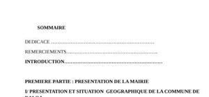 rapport de stage au CRHS