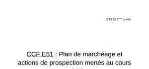 CCF: Plan de marchéage et actions de prospection menés au cours du stage à l'étranger