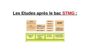 etudes sciences gestion