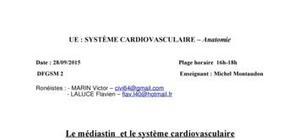 Cardiologie : Médiastin