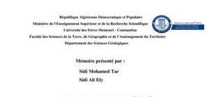 L'étude Pétro- métallogénique du gisement d'Or de Tasiast, Mauritanie (fosse West Branch)