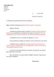 Lettre De Motivation Emploi Zoo Job Application Cover Letter